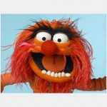 animal_muppet